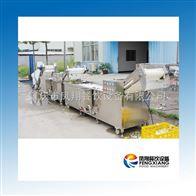 WA肇庆凤翔--净菜加工线 连续清洗切割生产系列