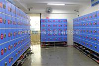 YJ-300H-ABS储物柜全塑储物柜尺寸\全塑储物柜规格\全塑储物柜型号