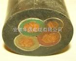 FS-YJV22-1-3*10+1*6防水电缆