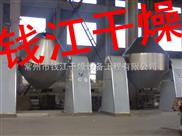 钱江生产:双锥干燥机