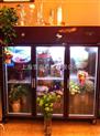 鲜花冷藏柜 鲜花柜尺寸 定做鲜花柜 商用展示柜