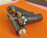 WDZC-YJY 0.6/1KV-3*6+1*4电力电缆