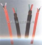 S型热电偶补偿导线 2*1.5