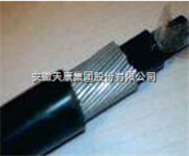 ZR-DJYVPR32阻燃钢丝铠装软结构计算机电缆