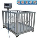 DCS-XC-H上饒稱豬用地磅秤,九江動物秤,吉安牲畜電子秤