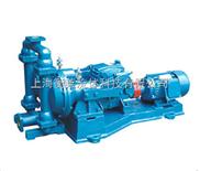 电动隔膜泵  (铸铁)