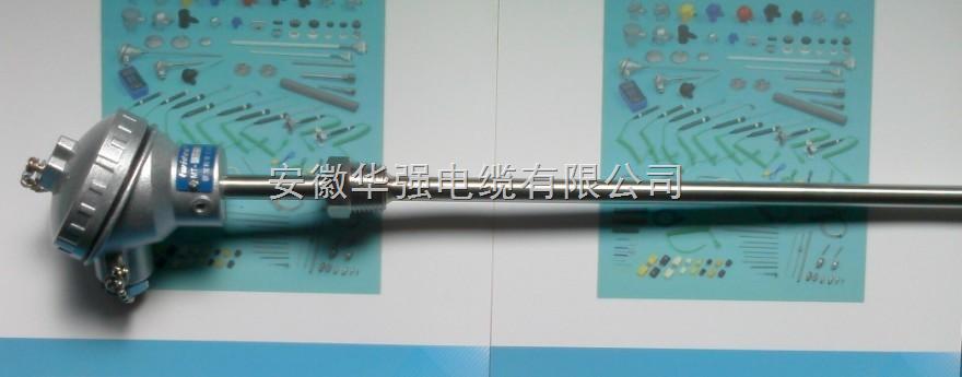 WRE2-230NM耐磨热电偶