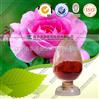 玫瑰花提取物 厂家优质供应 可做商检