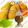 木瓜提取物 厂家优质供应 可做商检