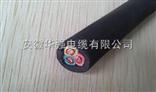 JHS 3*10防水电缆