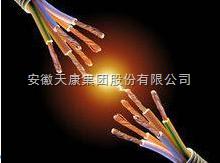 FY-KYJY4*6防鼠防蚁电缆