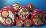 硅橡胶电缆ygc 1*120