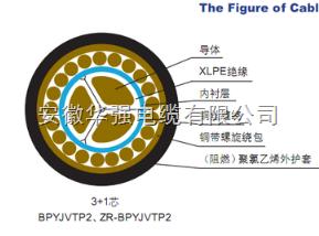 变频电缆BPVP1VP3-22