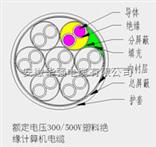 DJVP2V 4*3*1.0计算机电缆