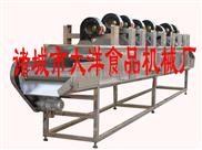 JCJ-大洋牌净菜加工生产线,蔬菜风干线