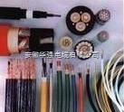 ZR-KVNVNRP 24*0.75 尼龙护控制电缆