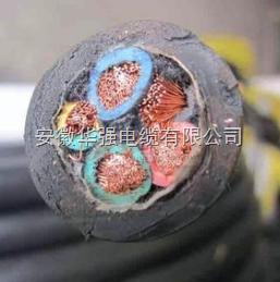 YCW 3*4+1*2.5 橡胶电缆
