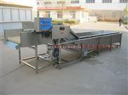 供應大量葡萄清洗機|葡萄鼓泡清洗機|洗葡萄設備