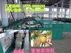 永州江水香柚果袋机,湖南香柚纸袋机,做柚子果袋的机器