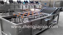 QX-800蔬菜袋类清洗系列柚子气泡清洗机