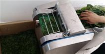 茶葉切絲機價格 荷葉切塊切絲機 荷葉茶加工設備