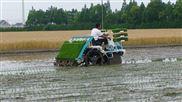 机动水稻插秧机