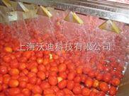 番茄酱加工设备生产线