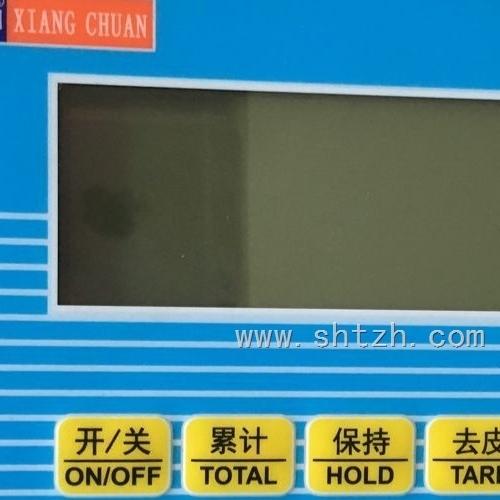 上海本安型防爆仪表