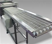 包装喷码检测轻型皮带输送机