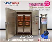 小型液氮速凍機設備廠家