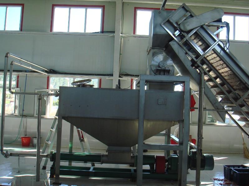 ADK-400水晶加工设备生产线、核桃加工设备核桃胶、图片