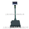 XK3100-B2机电改装秤,机械磅秤