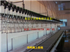 ZDX型鸡鸭鹅屠宰设备/家禽屠宰设备,家禽屠宰生产线设备