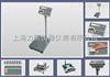 T2200P岳阳60kg打印秤,60kg标签电子打印秤